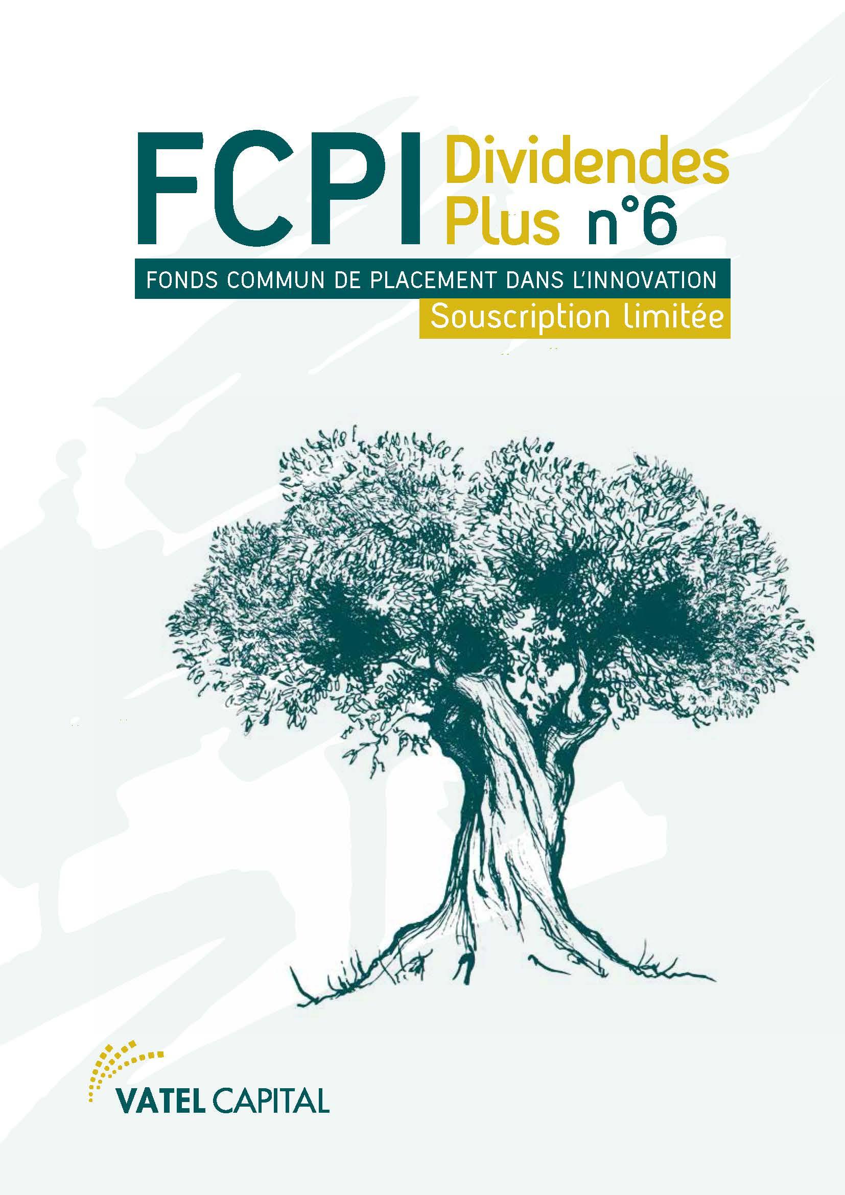 FCPI DIVIDENDES PLUS N° 6