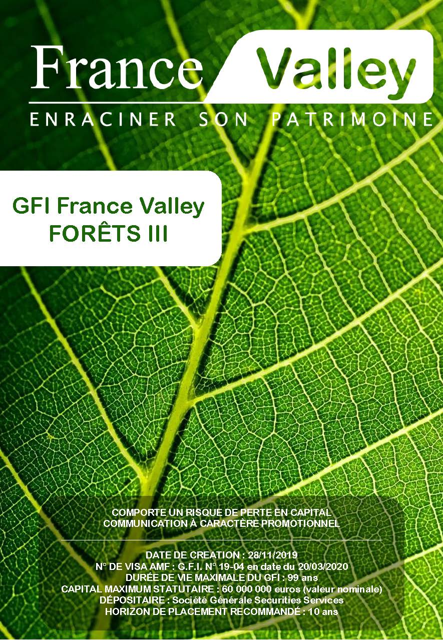 GFI France Valley Forêt III